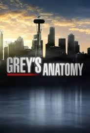View Greys Anatomy - Season 7 (2010) TV Series poster on INDOXX1