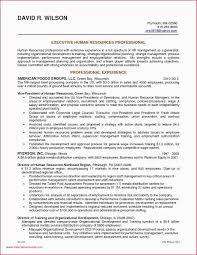 Sample Car Salesman Resumes Medical Sales Rep Resume Professional Resume Sample For Medical