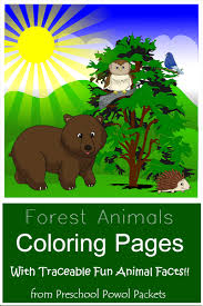 Forest Animal Coloring Page Forest Animal Coloring Pages For Kids With Free Forest Animals