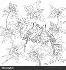 Kleurplaat Voor Volwassenen Met Vogels En Bloemen Stockvector
