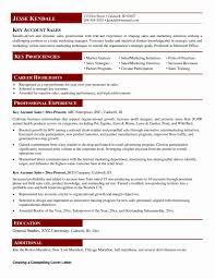 Account Executive Job Description Resume Unique Account Executive ...