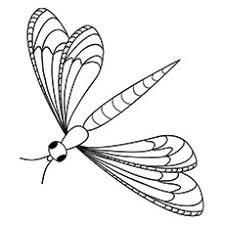 Small Picture Top 10 Dragonfly Coloring Pages For Toddlers