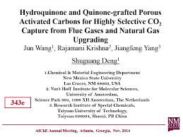 novel porous carbon adsorbents for co2 capture from flue gas and natural gas upgrade