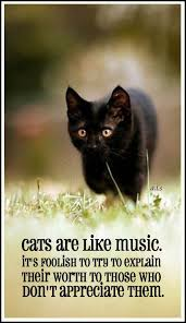 cats are like music it s foolish to try to explain their worth  cats are like music it s foolish to try to explain their worth to