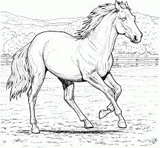Printable Coloring Pages horse coloring pages to print for free : Download Coloring Pages. Coloring Pages Of Horses: Coloring Pages ...