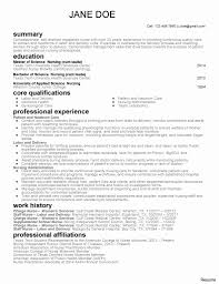 Public Health Resume Sample Behavior Specialist Social Services Modern 100 Direct Support 31