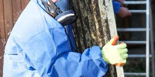 What Does A Hazardous Materials Removal Worker Do