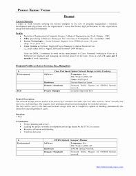 Senior Accountant Resume Sample India Lovely Accountant Resume