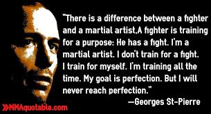 Martial Arts Quotes Inspiration Motivational Quotes With Pictures Many MMA UFC There Is A