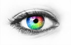 Pics Of Eyes Eyes Have It Neuroscience