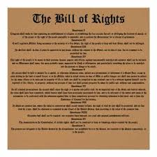 public law bill of rights essay bill of rights essays and papers
