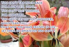 Islamic Quotes About Friendship Islamic Quotes About Friendship Amazing Islamic Quotes About 81