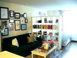 studio apartment furniture. Studio Apt Furniture Layout Ideas Packed With Apartment Setup  Bedroom For Prepare Stunning D