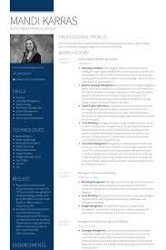 senior digital marketing analyst resume samples online marketing resume sample
