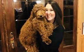 Delcambre Woman Offering $3,000 For Info On Who Murdered Her Dog