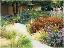 Small Picture Best 25 Zero scape ideas only on Pinterest Desert landscaping