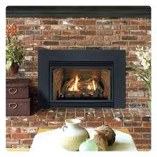 gas fireplace insert fireplaces inserts free standing propane bricks cup fire wall ventless vent with remote gas fireplace fireplaces insert