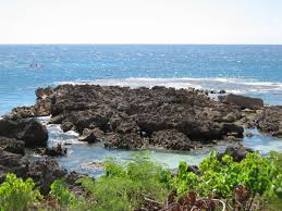 Sharks Cove Pupukea 2019 All You Need To Know Before You