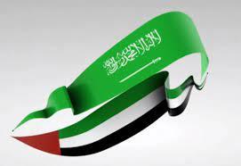 ما الذي تفعله السعودية والإمارات في المنطقة ؟