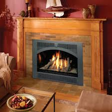 not sure what the difference is between a fireplace a stove and an insert