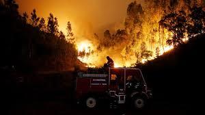 Image result for incendio forestal en el centro de Portuga