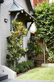 Small Picture Randwick Pool and GardenSydney Landscape Architecture Design