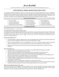 Executive Resume Example - Resume Sample