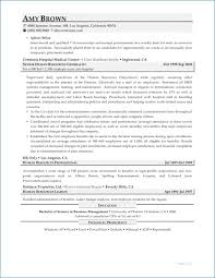 Resume Format For Freshers In Airlines Resume Example