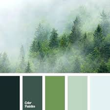 colors that go with grey and green color palette color palette ideas best makeup colors for