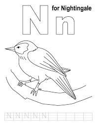 Small Picture Letter N Nightingale animal coloring page Homeschooling