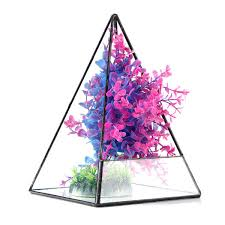 triangle greenhouse glass terrarium diy micro landscape succulent plants flower pot at banggood sold out
