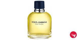 dolcegabbana pour homme 2016 dolcegabbana cologne a fragrance for men 2016