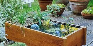 container water garden. Delighful Garden Do It Yourself To Container Water Garden Y