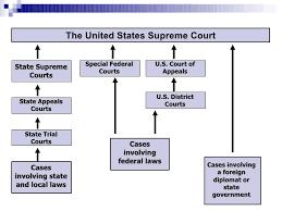 Organization Of U S Court System
