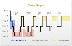 Ideal Sleep Cycle Chart Why Does Taking A Nap Give Me A Headache Guidescroll