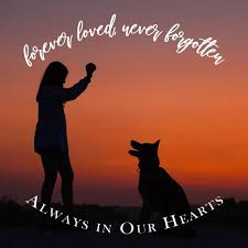 pet loss es poems more to honor