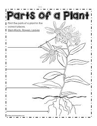 Small Picture Parts of a Plant Worksheets Worksheets