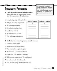 Possessive Pronouns Grade 3 Printable Test Prep Tests