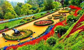 botanical garden ooty the epitome of haunting beauty