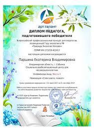 Достижения центра 14 Диплом победителя Всероссийского профессионального