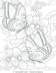 Free Flower Coloring Pages Flower Coloring Pages Coloring Print
