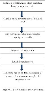 Figure 1 From Application Of Dna Fingerprinting Tools For