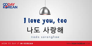 how to say i love you in korean i love you too