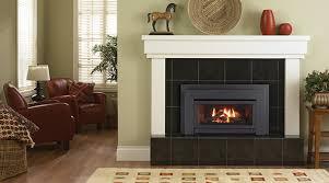 small gas stove fireplace.  Gas Energy E21 Small Gas Insert Category Fireplaces In Stove Fireplace