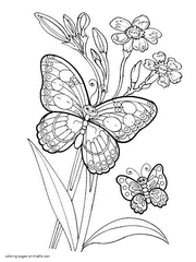 the erfly picture colouring page of some lovely erflies erflies and flowers coloring book