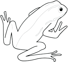 tree frog template frogs coloring pages best coloring pages 2018