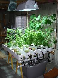 diy hydroponics plans best of here s an easy diy pact hydroponic indoor farm system you