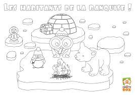 Coloriage Animaux De La Banquise Meilleures Id Es Coloriage Pour