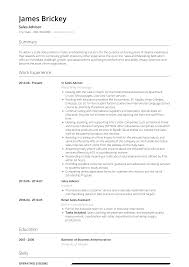 Cv Sales Assistant Sales Advisor Resume Samples And Templates Visualcv