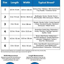 Baskerville Muzzle Size Chart Accurate Baskerville Ultra Muzzle Size Guide 2019